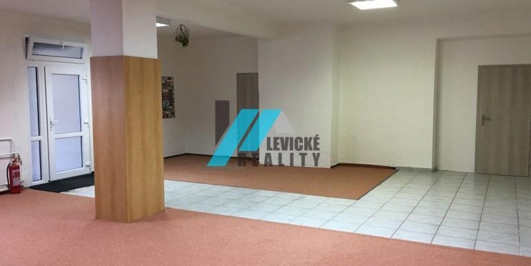 levicke-reality-1