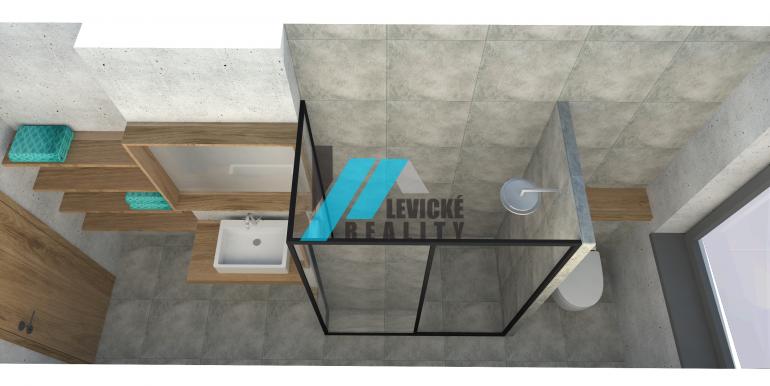 levicke-reality-5
