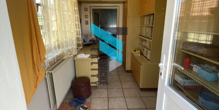 Levicke-reality-7