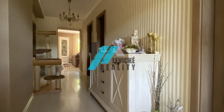 Levicke-reality-9