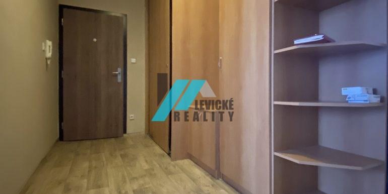 Levicke-reality-8